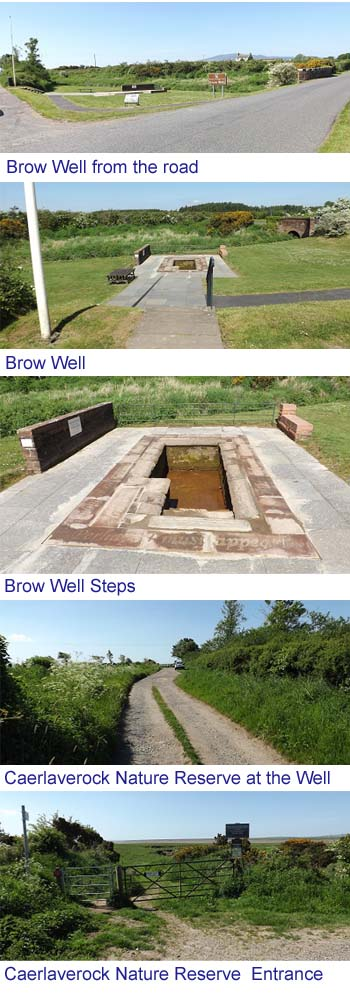 Brow Well Images