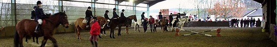 Glasgow Horse Riding Easterton Equine Activities image