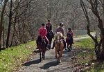 Horse Haven Riding School image
